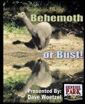 Behemoth or Bust, DVD